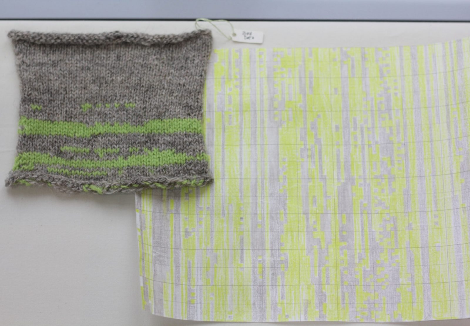 Deirdre Nelson, Bird Data chart & knitted sample
