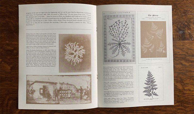Centre page of Anna Atkins' Sun Gardens publication